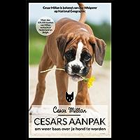 Cesars aanpak