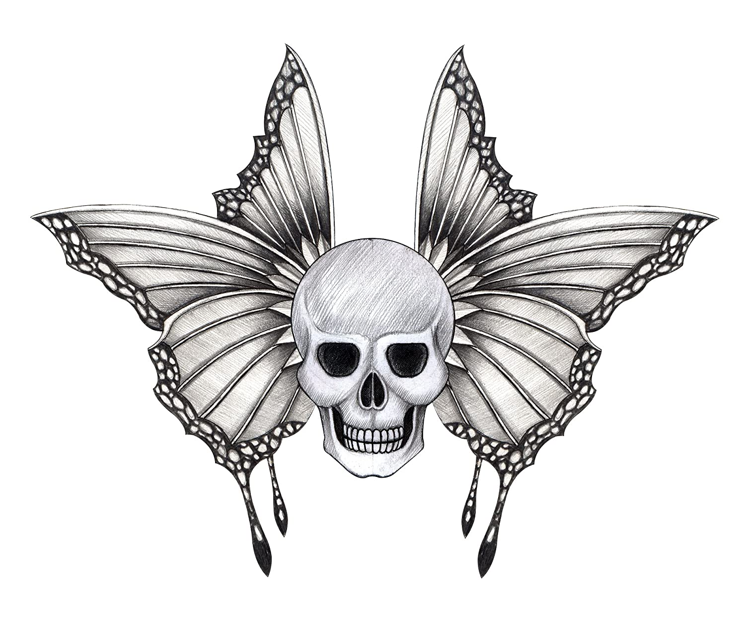 Amazon com pencil sketch skull with delicate butterfly wings vinyl decal sticker 4 wide automotive