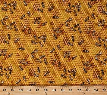 Honey Bees On A Honey Combs Elizabeths Studio 510 Honey