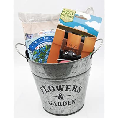 Flower Planter Bundle with Hanging Pot Decoration, Potting Soil, Forget Me Not Flower Seeds: Garden & Outdoor