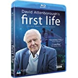 David Attenborough's First Life [Blu-ray]