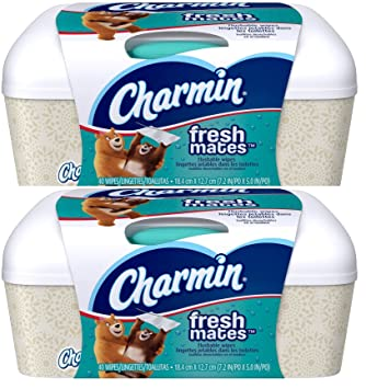 Charmin Freshmates Wipes, 40ct, 2pk