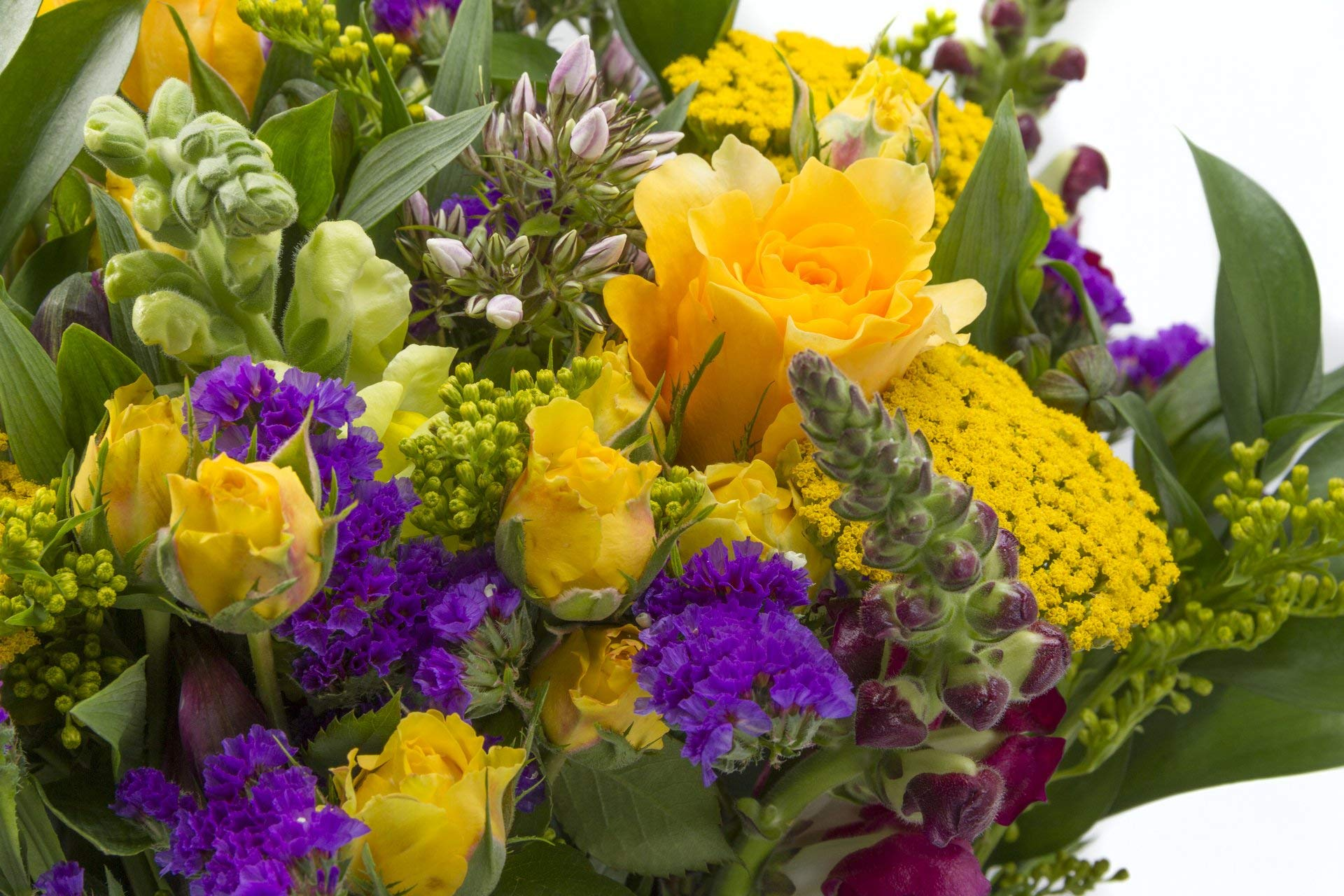 Chichi Party Purple and Yellow Flowers with Roses, Snapdragons, and More Sustainably Grown and Harvested, No Vase Included by BloomsyBox (Image #4)