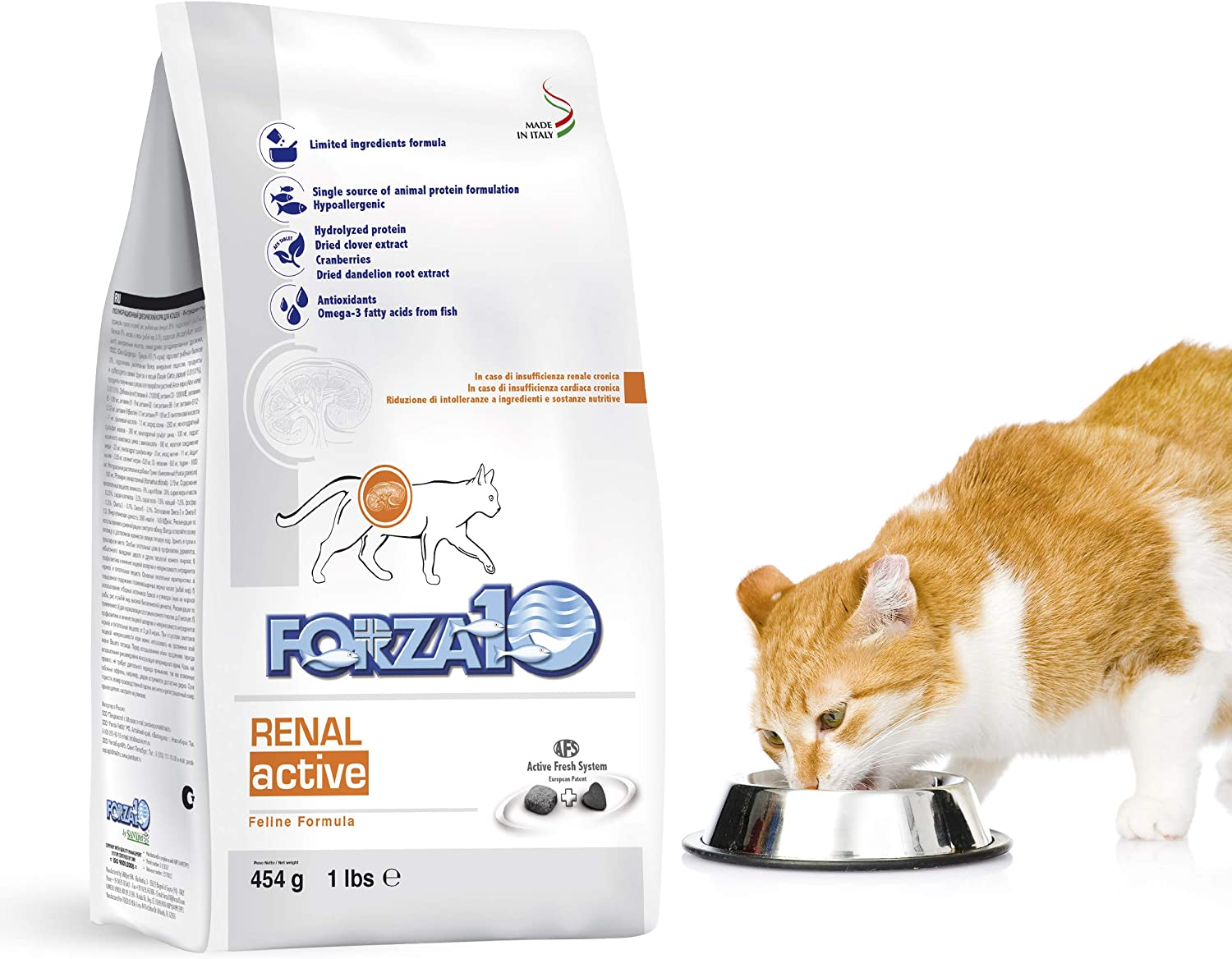 Forza10 Active Kidney Renal Diet Dry Cat Food for Adult Cats, Cat Food Dry for Heart and Kidney Problems, Wild Caught Anchovy Flavor, 1 Pound Bag