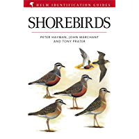 Shorebirds (Helm Identification Guides)