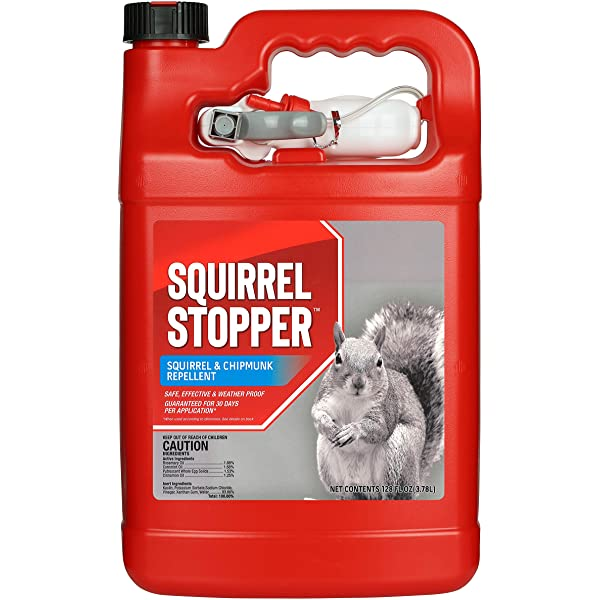 Amazon Com Ortho Animal B Gon All Purpose Animal Repellent Ready To Use Spray 1 Gallon Squirrel Groundhog Rabbit And Other Small Herbivore Repellent Home Pest Repellents Garden Outdoor
