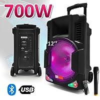 """Enceinte active batterie 700W 12"""" LEDs RVB + Micro - USB/SD/BLUETOOTH + Télécommande"""