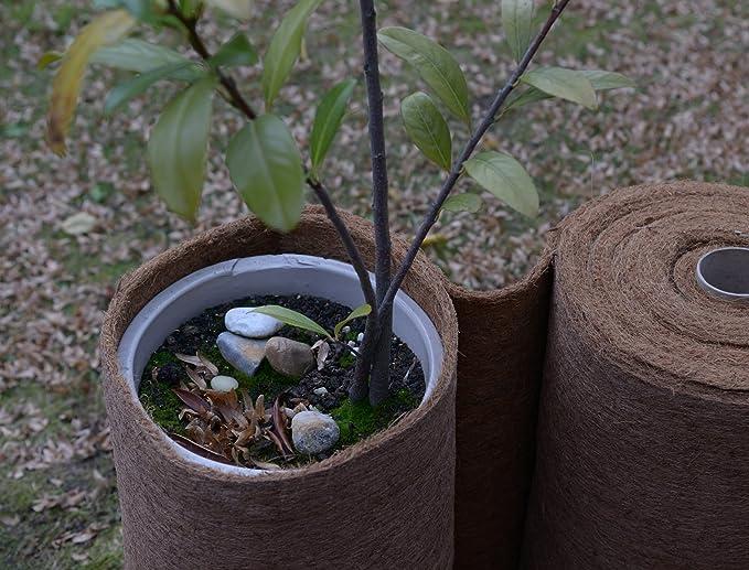 Pflanzkübel Winterschutz Kokosmatte 2 m x 0,50 m Kokosfasermatte