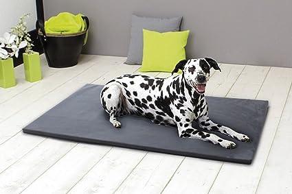Tappeto Morbido Per Cani : Kamaca xl tappetino per cani lavabile igienico lavabile