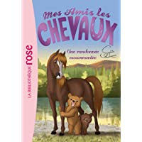 Mes amis les chevaux, tome 5 : Une randonnée mouvementée
