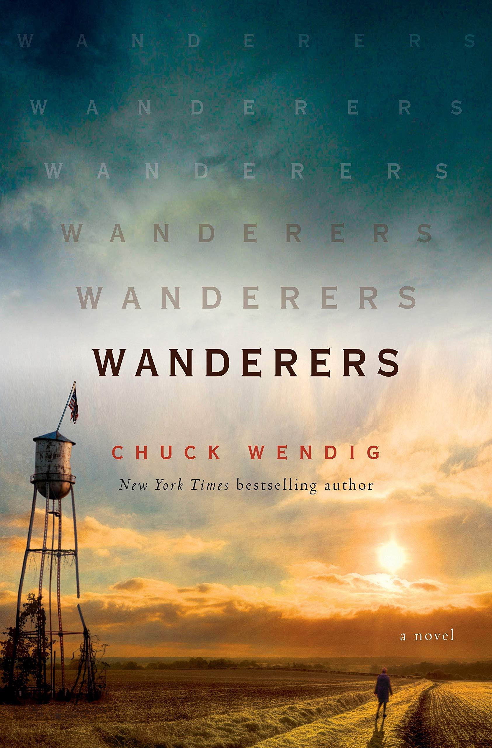 Wanderers: A Novel book cover