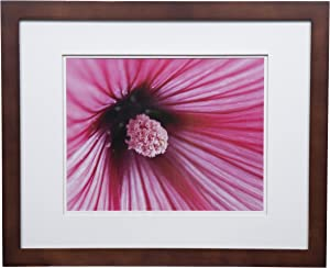 "Gallery Solutions Flat Walnut Wall Picture White Photo 16X20 DOUBLE FRAME, MATTED TO 11X14, 16"" x 20"""