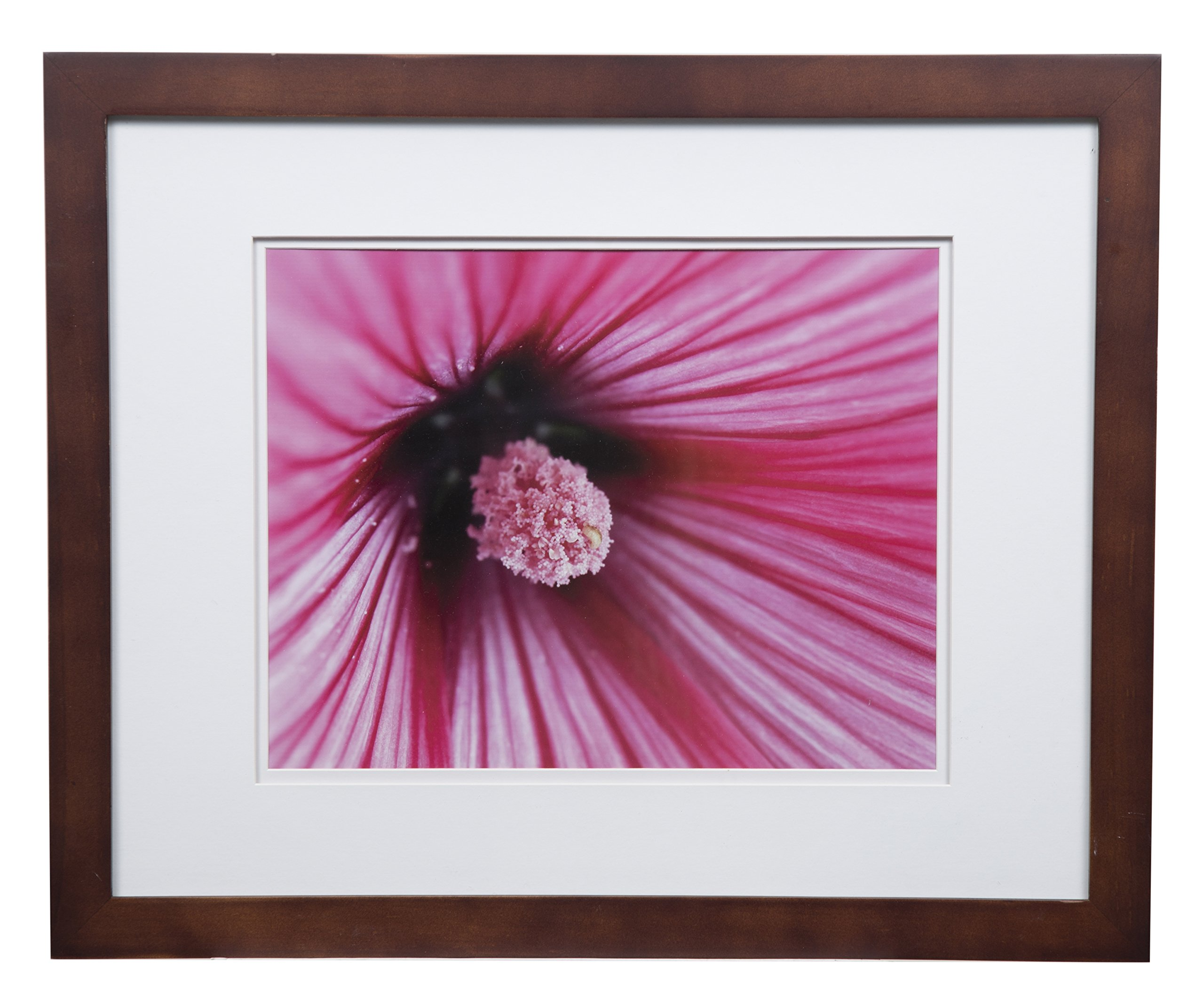 Gallery Solutions Flat Wall Picture White Photo 16X20 Walnut Double Frame, MATTED to 11X14, 16'' x 20'',