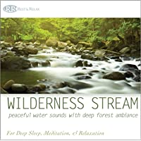 Wilderness Stream: Peaceful Water Sounds with Deep Forest Ambiance (Nature Sounds, Deep Sleep Music, Meditation…