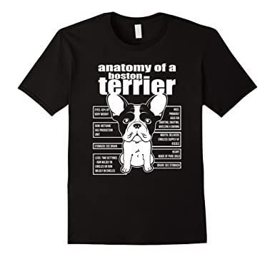 Amazon.com: ANATOMY OF A BOSTON TERRIER SHIRTS: Clothing