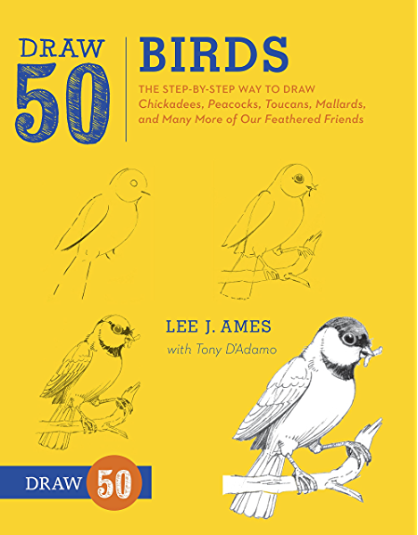 Amazon Com Draw 50 Birds The Step By Step Way To Draw Chickadees Peacocks Toucans Mallards And Many More Of Our Feathered Friends Ebook Ames Lee J D Adamo Tony Kindle Store
