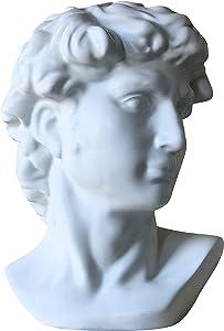 Poetic David Hero Head, White Glazed Stoneware, Grecian Bust, 7.75 L x 7.0 W x 11.5 H Inches, 3.5 lbs, Home Decor