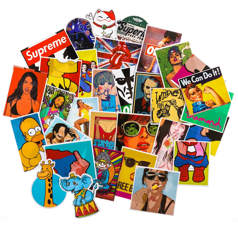 db2f3f8f6b Graffiti Stickers for Laptop [100PCS], Fashion Pinup Vinyl Decals for Water  Bottle Hydro Flask Macbook iPhone Phone Case iPad Car Bike Bumper  Skateboard ...