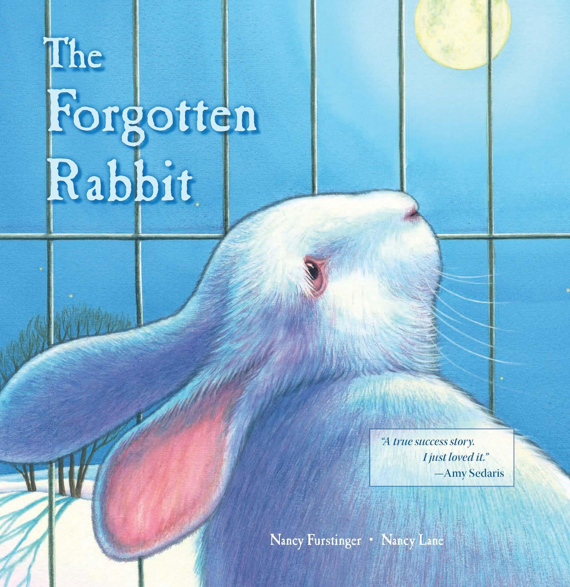 The Forgotten Rabbit