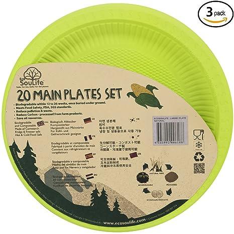 Amazon com: Biodegradable Cornstarch Disposable Plate Set