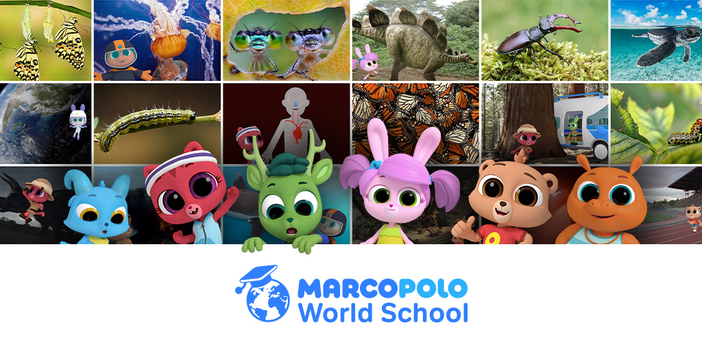 Amazon.com: MarcoPolo World School