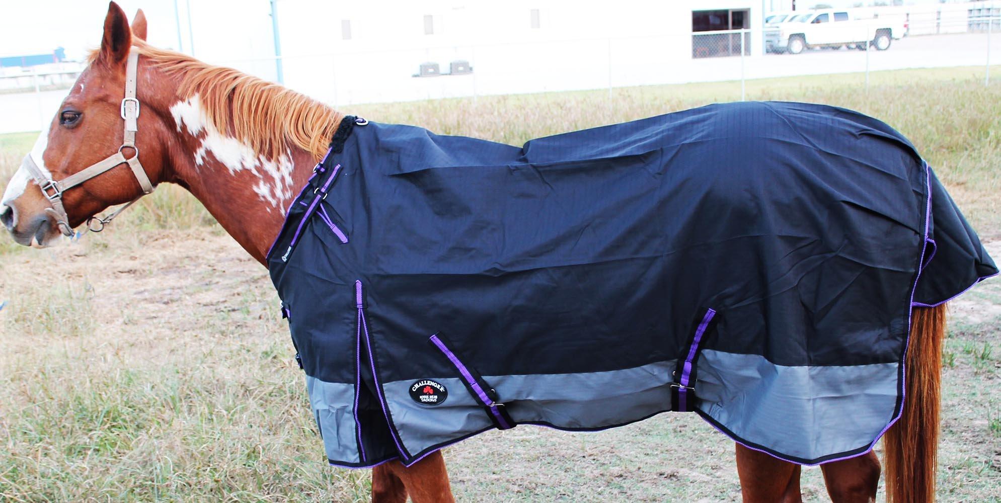 Challenger 78'' 1200D Turnout Waterproof Rain Horse SHEET Light Winter Blanket Gusset 354