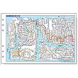 レイメイ藤井 ダヴィンチ リフィル 全国鉄道路線図 聖書 DR550