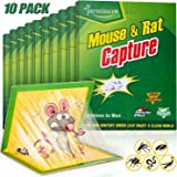 Mouse Traps, Humane Mouse Glue Trap, 10 PCS Rat/Mice Traps Sticky Pad Boards Strongly Adhesive Mouse Traps That Work No See K