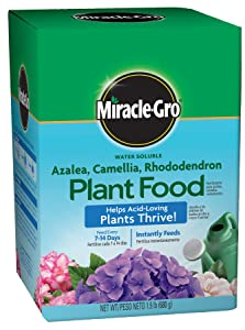 Miracle-Gro Plant Food Fertilizer for Acid Loving Plants