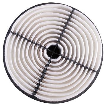 Amazon Com Pg Air Filter Pa4646