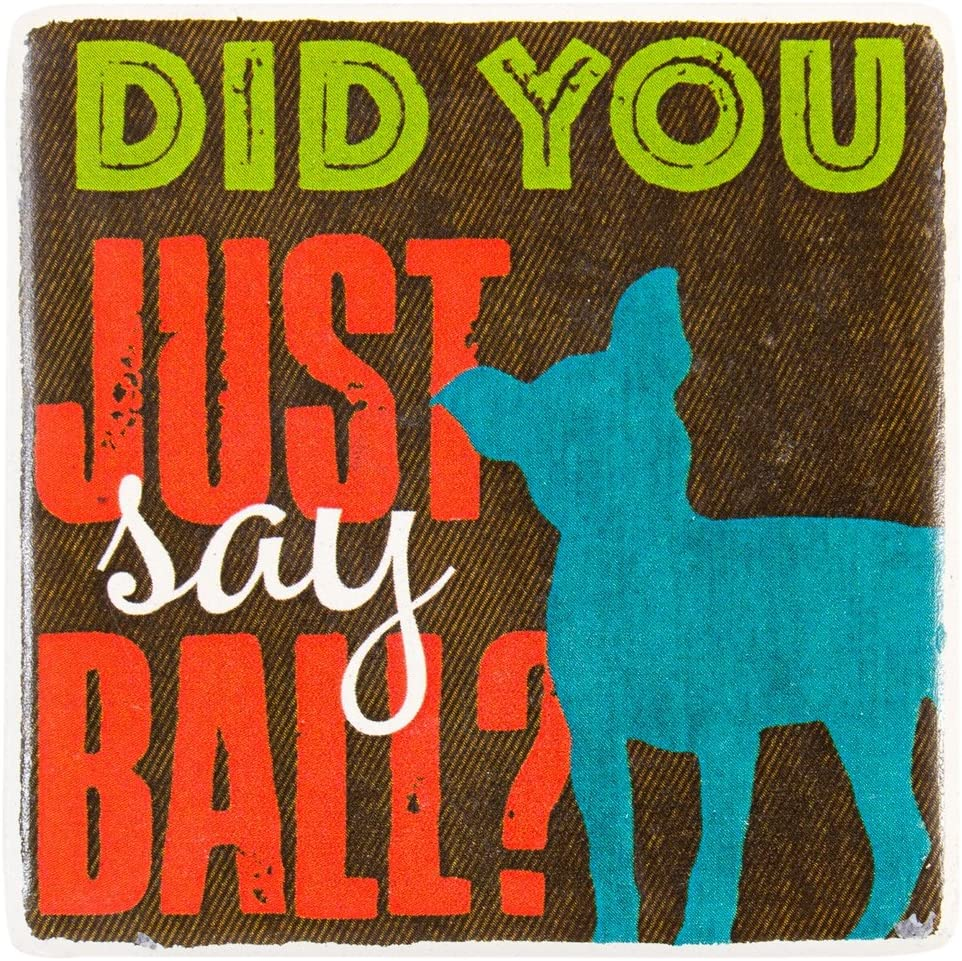 Highland Graphics - Jack Russel Did You Just Say Ball Ceramic Refrigerator Magnet
