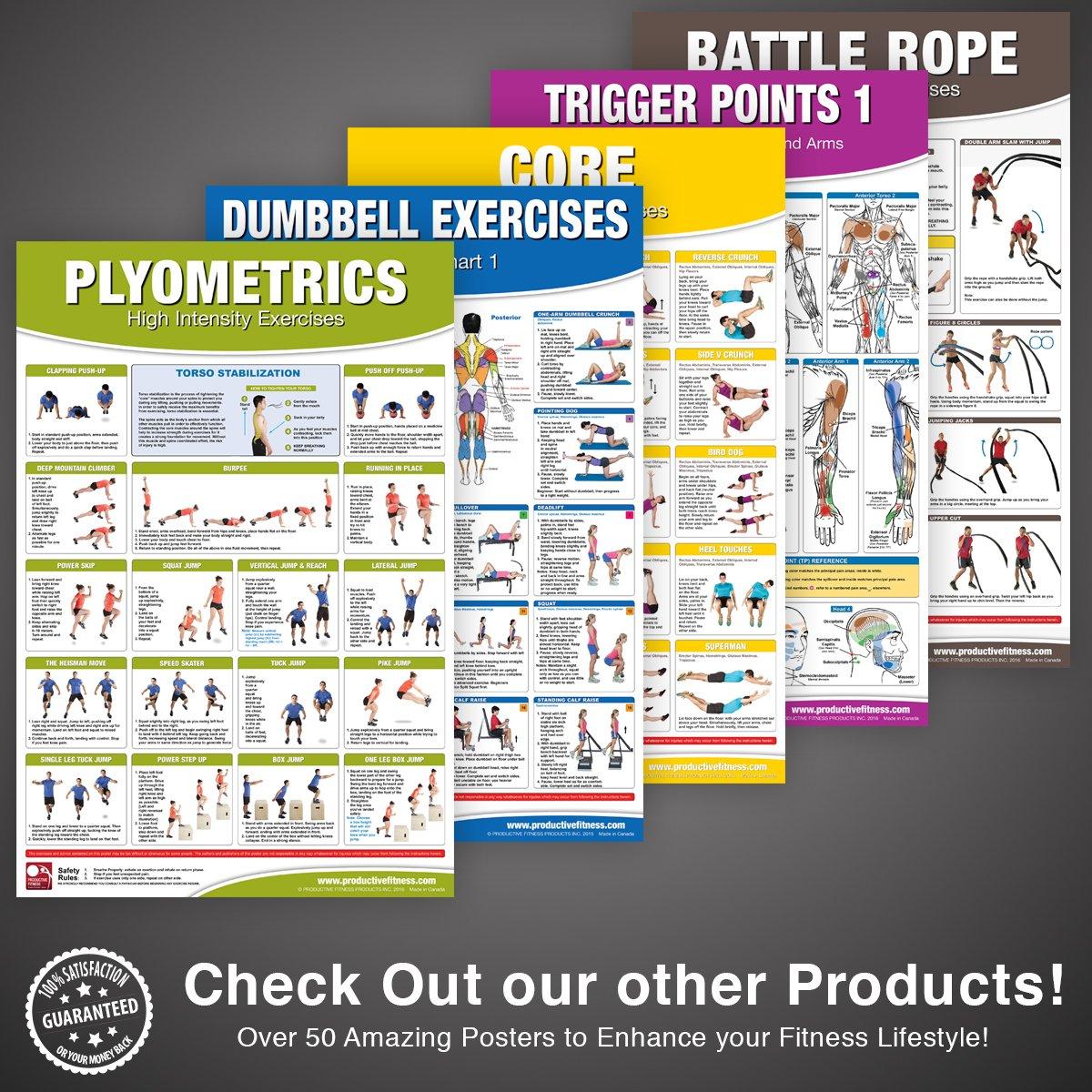 Amazon.com : Dumbbell Workout Poster/Chart Set: Shoulder Training ...