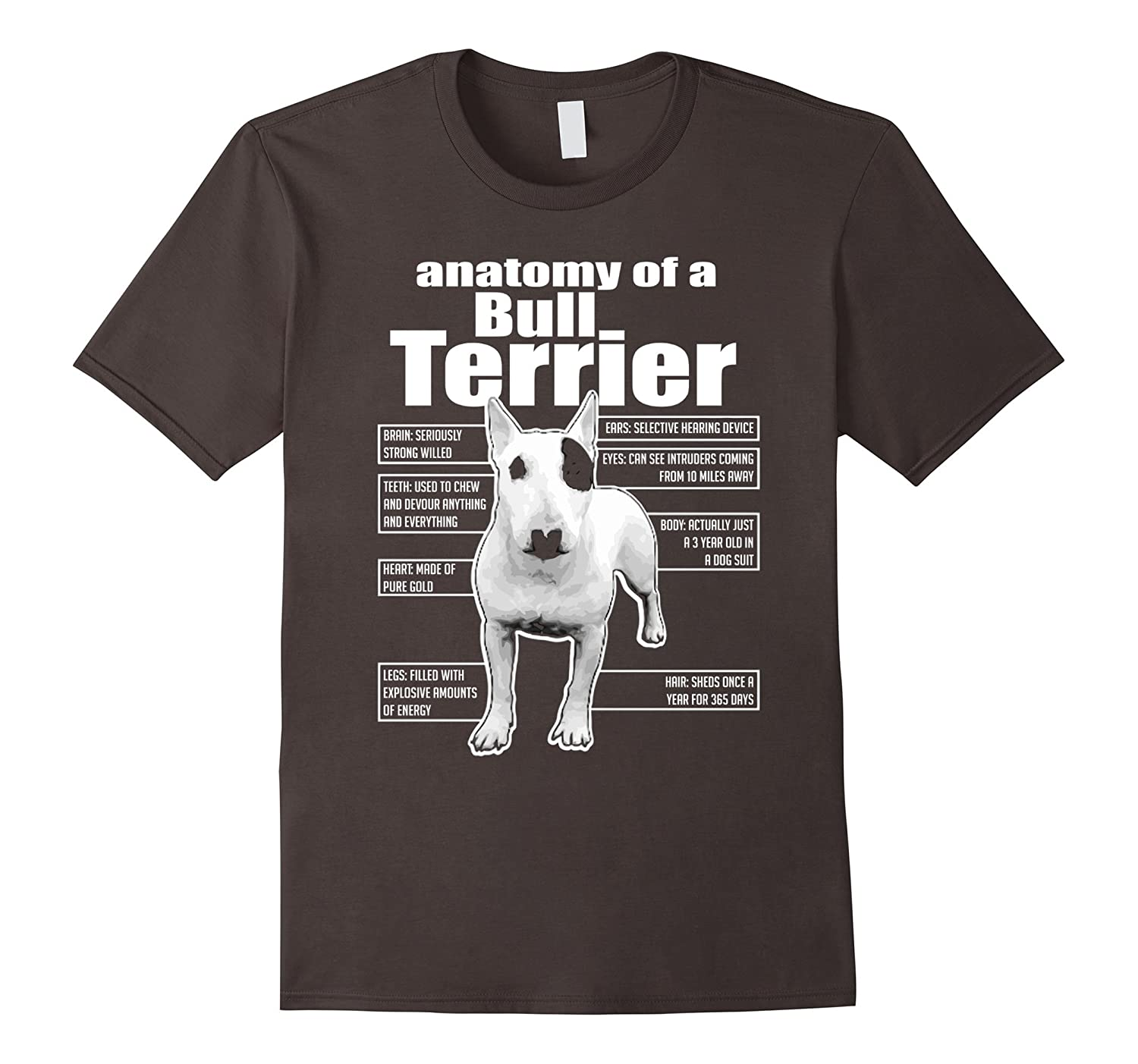 Amazon Anatomy Of A Bull Terrier T Shirts Funny Bull Terrier