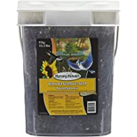 Morning Melodies 406-262 Black Oil Sunflower Seed Pail 6kg, 1 Piece, Small