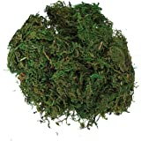 KINGSO Artificial Reindeer Moss For Lining Plant Flower Garland Decor by King So