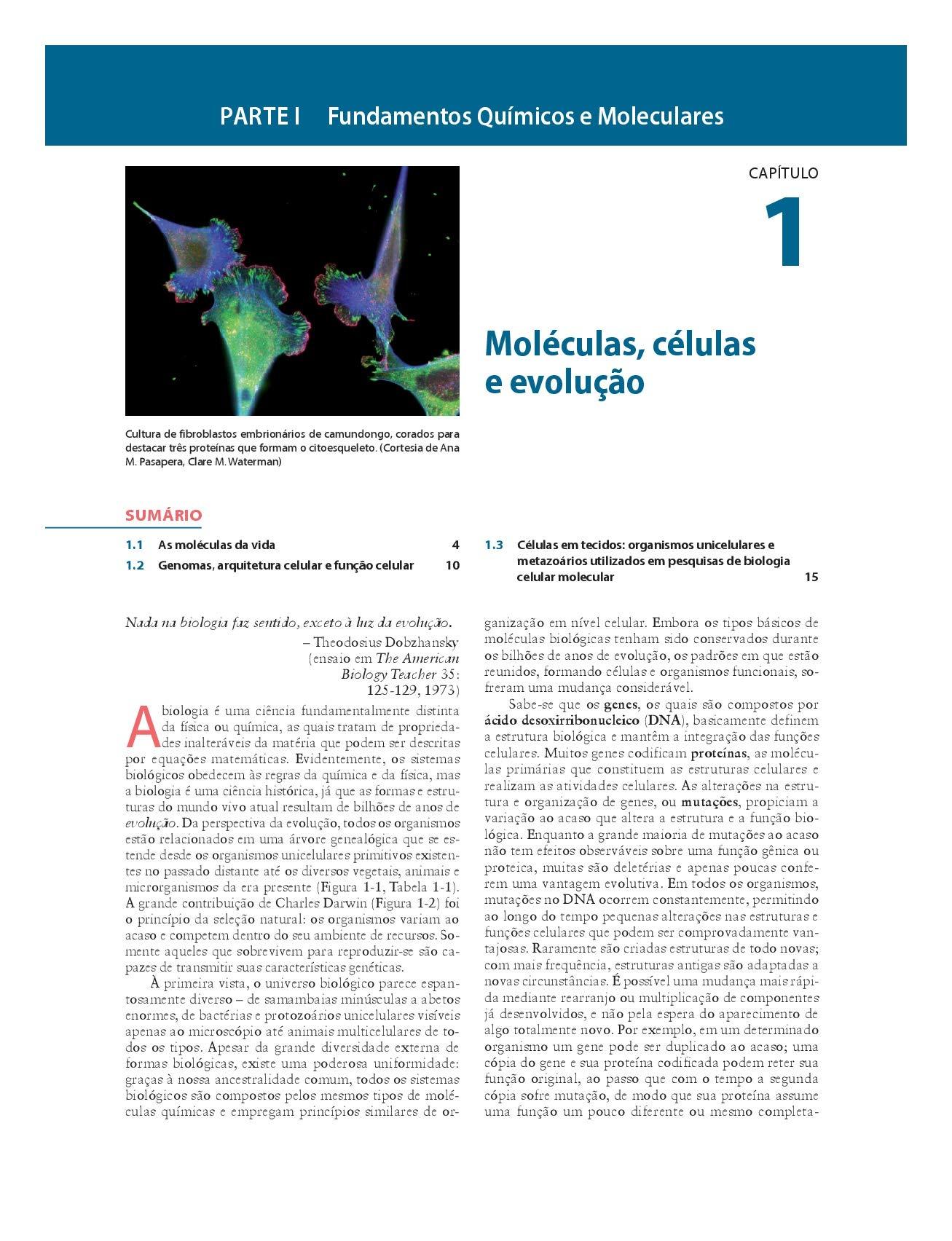Biologia Celular e Molecular Em Portuguese do Brasil: Amazon ...
