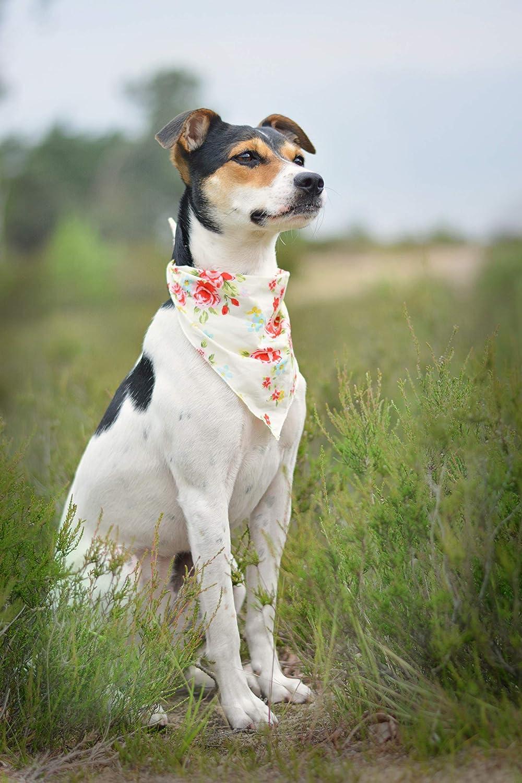 Pet Pooch Boutique Halstuch f/ür Hunde Vintage-Stil