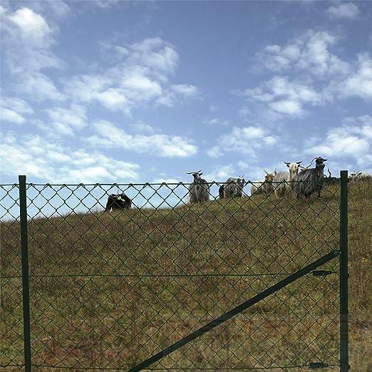 Juego completo de valla de tela metálica, tamaño a elegir, valla de jardín, 1,0 x 25 Meter: Amazon.es: Hogar