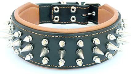 Genuine Leather Dog Collar with Studs Soft Padded Hand made in all sizes