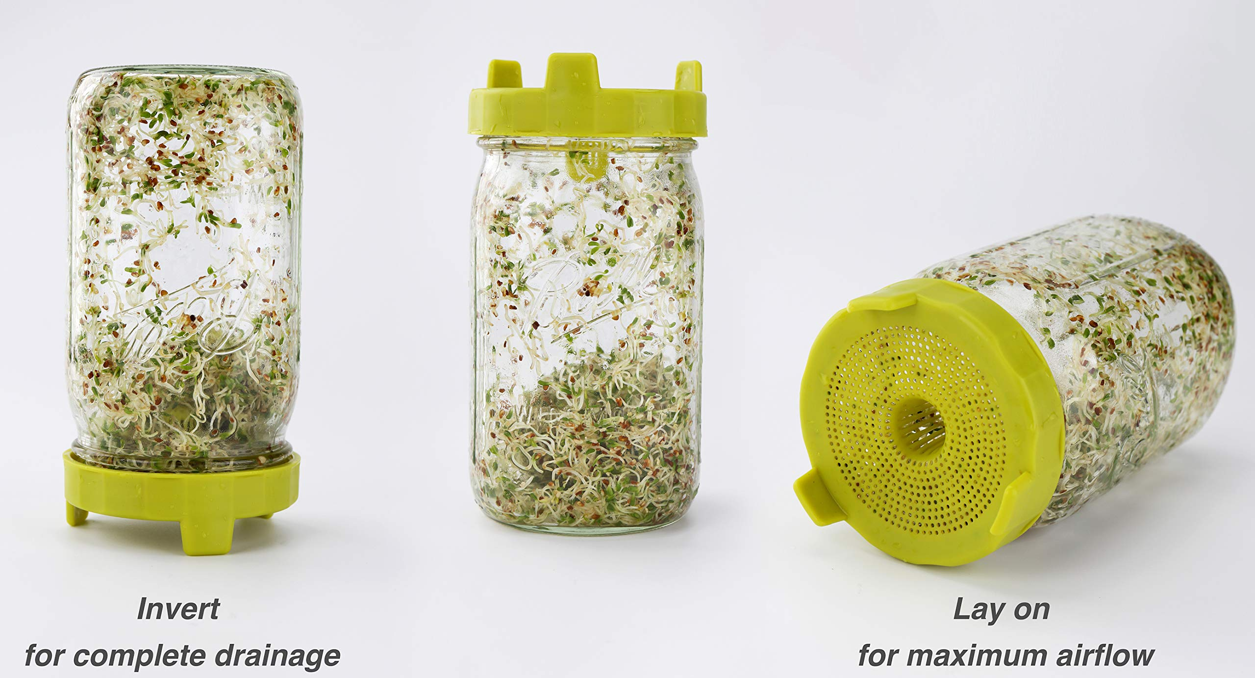 Soligt Easy Rinse & Drain Sprouting Lids for Wide Mouth Mason Jars – 6 Pack by SOLIGT (Image #6)