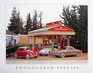 Endangered Species Volkswagen-VW Classics Wall Decor Art Print Poster (16x20)