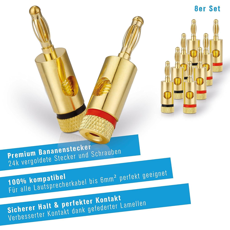 C/âble de haut-parleur Hifi Set comprenant 4 fiches bananes 99,9/% OFC cuivre massif 0,20 mm PureLink SP060-010 C/âble denceinte 2 x 2,5mm/² 10m transparent