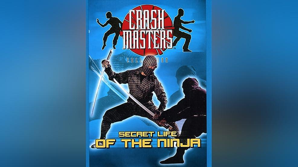 Secret Life of The Ninja