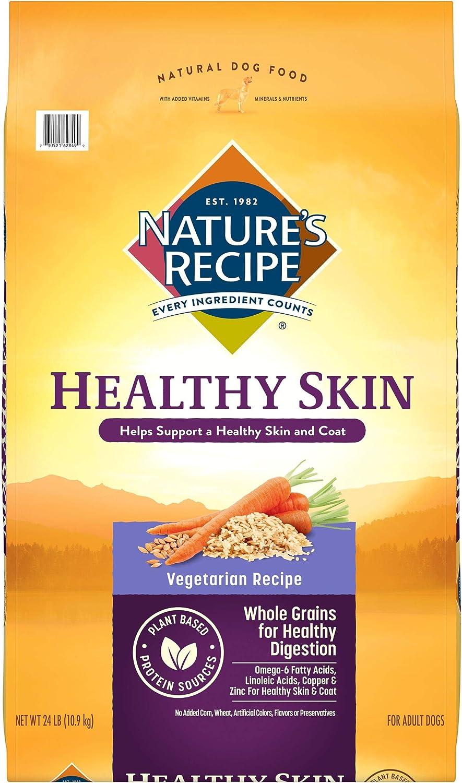 Nature's Recipe Healthy Skin Vegetarian Recipe Dry Dog Food