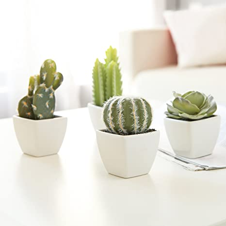 Mygift Set Of 4 Artificial Mini Succulent Cactus Plants In White Cube Shaped Pots Home Kitchen