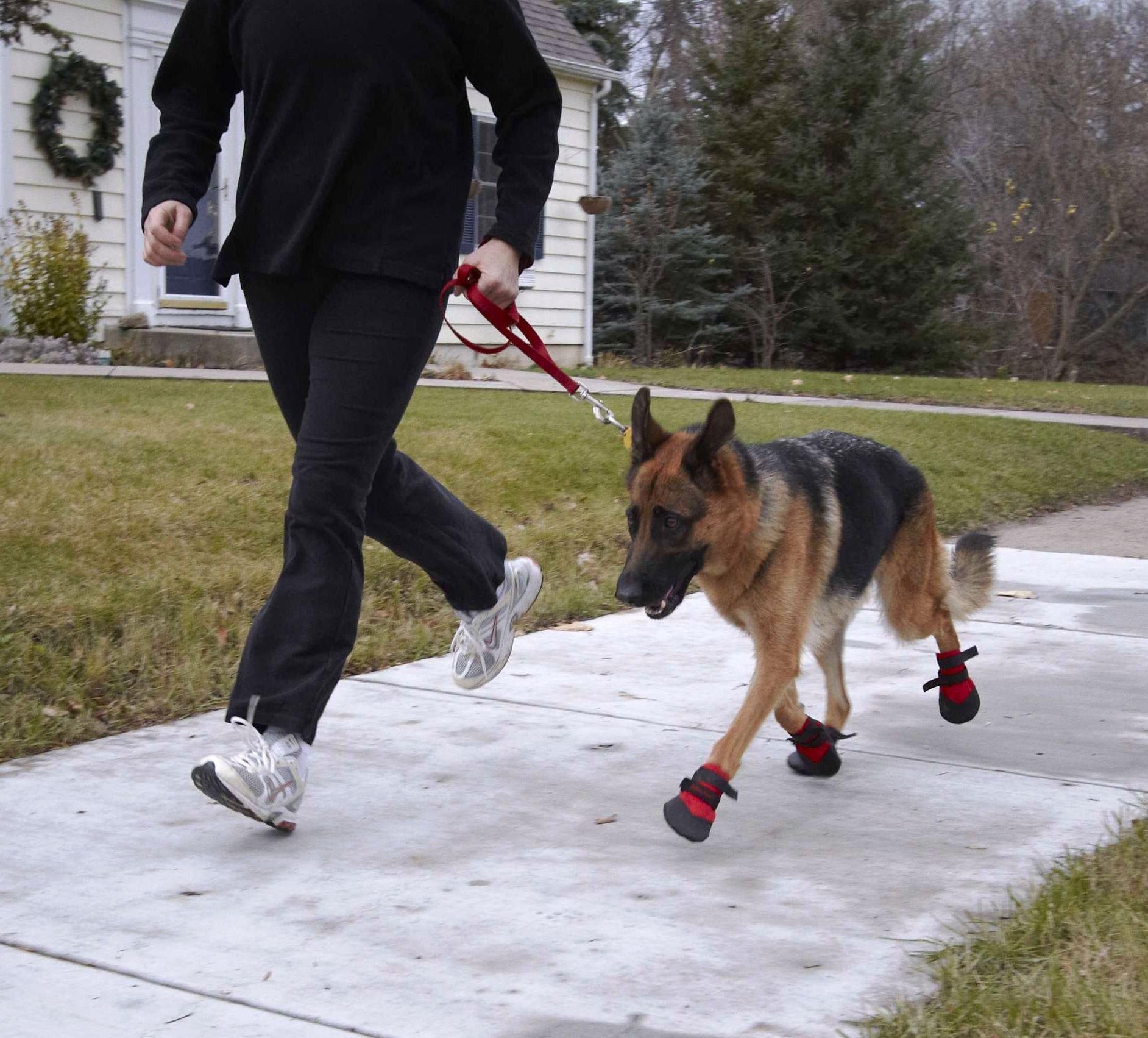 Ultra Paws Rugged Dog Boot, Black, Medium
