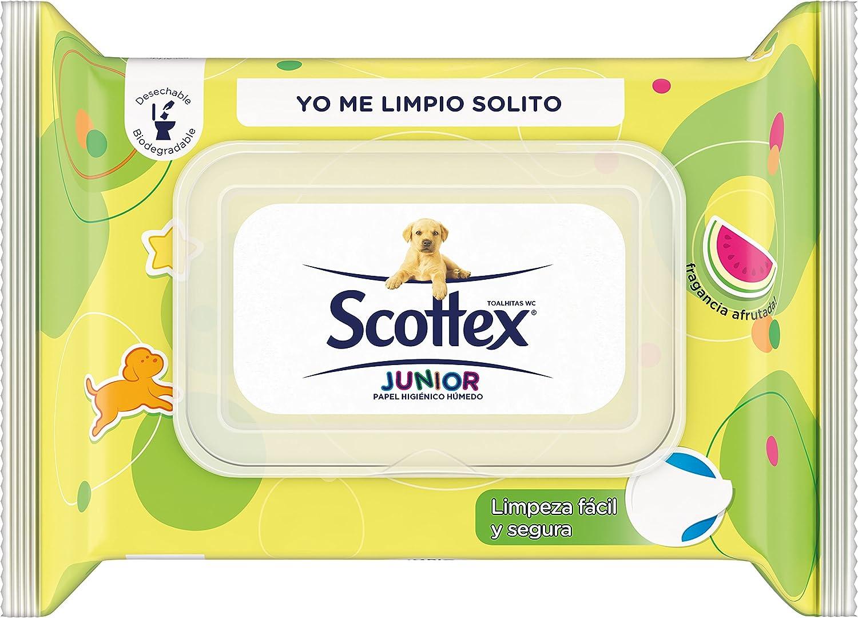 Scottex Junior Papel Higiénico Húmedo - 76 hojas: Amazon.es ...