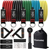 RENRANRING Resistance Bands Set,Exercise Bands with Stackable Workout Bands, Door Anchor Attachment, Handles, Legs Ankle Stra