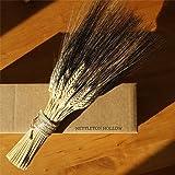 Blackbeard Wheat Sheaf