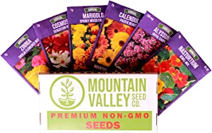 Annual Flower Garden Seed Collection - Basic Assortment - 6 Flower Gardening Seed Packets: Marigold, Cosmos, Calendula, Alyssum, Zinnia, More